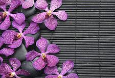 Stickers muraux autocollant déco : Fleurs - réf 1431 (16 dimensions)