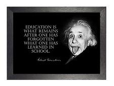 Educación Albert Einstein Gracioso Cotización De inspiración Blanco Negro Foto Nobel de cartel