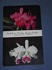 Vintage 1955 Orchids at McKee Jungle Gardens Vero Beach Florida Postcard