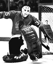 Chicago Blackhawks Goalie TONY ESPOSITO Glossy 8x10 Photo NHL Hockey Print