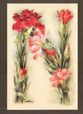 """N"" KLEIN FLOWER ALPHABET,PINKS,REPRODUCTION POSTCARD"
