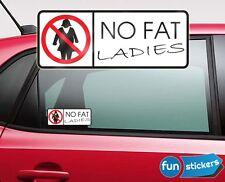 Aufkleber NO FAT CHICKS / Ladies Auto Aufkleber Tür Wand Sticker Shocker FUN JDM