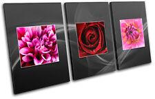 Botanical Rose Pink Red Floral TREBLE TOILE murale ART Photo Print