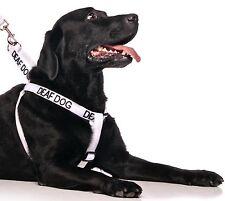 Canine Chien sourds forte clip harnais chien marche facile et 2 4 6 pieds ensembles de plomb