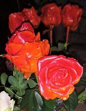 Frische Wachsrosen als Gedenken/ Valentins,-Muttertag in vielen Farben