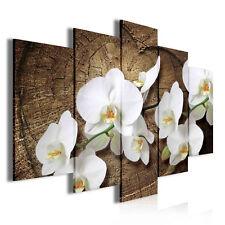 CANVAS Wandbild Leinwandbild Bild Orchidee Blumen Blume Holz Herz Baum 14N417S17