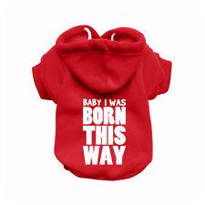 BABY I WAS BORN Red Dog Sweatshirt Hoodie - Dog Sweater - Dog Jumper