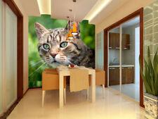 3D Cat Pattern Wall Paper Wall Print Decal Wall AJ WALLPAPER CA