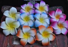 2 Haarclips Fleurs de Frangipanier Couleurs Hawaii Pince à Cheveux 1 Paire
