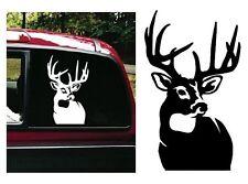 BUCK decal sticker gun bow deer hunting hunt truck DUCK DYNASTY big large doe