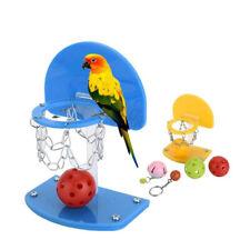 BL_ Mini Basketball Stand Hoop Pet Bird Parrot Toy Parakeet Budgie Cockatiel Toy