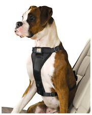 Crash-getestet: Sicherheitsgeschirr Kurgo Tru-Fit Smart harness v.3, inkl. Gurt