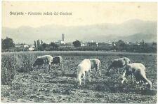 SCARPERIA - PANORAMA VEDUTO DAL CROCIONE (FIRENZE) 1924