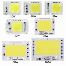 10W20W30W50W100W 220V Ingresso Smart IC Nessun driver richiesto COB LED Chip