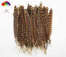 Wholesale Premium Diy 10-100PCS Natural Pheasant Tail Feathers 4-10cm/2-4in cp7