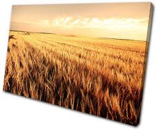 Landscapes Corn Field SINGLE DOEK WALL ART foto afdrukken