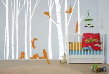 Birch Tree Wall Decal Forest  Squirrels Vinyl Sticker Removable Nursery Art Baby