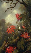 "Martin Johnson Heade : ""Hummingbird and Passionflowers"" — Giclee Fine Art Print"