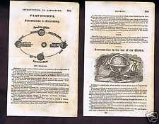 1845 Olney Astronomy Woodcuts - Seasons - Globes