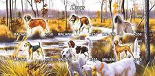 **Dogs Saint-Bernard Terrier Spaniel Afghan Collie Malawi 2012 MNH IMPERF  #C284