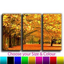 Autumn Woods Landscape Canvas Treble Wall Art Print Picture Various Sizes 3-