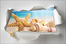 Adhesivo trampantojo papel desgarrado decoración Estrella de mar ref 1312