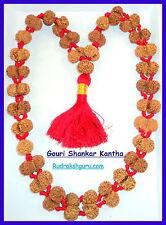 Gouri Shankar Rudraksh Kantha / Gowri Shankar Rudraksh - Nepal - LAB CERTIFIED