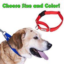 Gogo Nylon Martingale Dog Collar - No Slip Training Choke - Lifetime Warranty