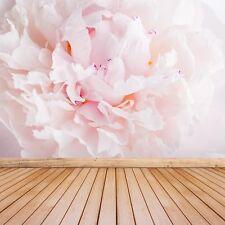 Photo papier peint murale non-tissée Pivoine Rose