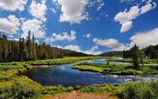 Blue River Green Nature Landscape  Scenery  100% Canvas Print wall home Decor