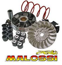Variateur MALOSSI MHR Ark Eikon Chrono Dragster Evolis GARELLI GSP SR Big wheel