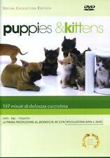 Puppies & Kittens DVD KAZE
