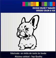 Bulldog Frances - Sticker Vinilo - Nuevo diseño - Pegatina  - Vinyl French