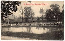Thompson Ridge NY - FISHING POND - Postcard