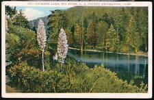 BIG PINES CA Jackson Lake LA County Camp Vtg Postcard