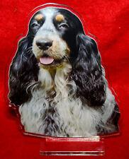 statuette photosculptée chien cocker anglais 6 dog hund estatua perro statua
