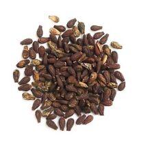 Ayurveda Shivlingi Beej Powder|Bryonia Laciniosa|Indian Bryony|Lollipop Climber