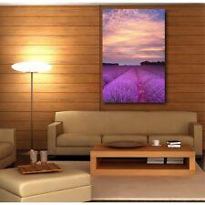 Tableaux toile déco rectangle verticale champ de lavande 59441668