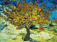 Vincent van Gogh: Mulberry Tree Keilrahmen-Bild Leinwand Maulbeerbaum