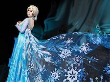 Frozen - Vestiti Carnevale Elsa Donna - Dress up Elsa Costumes Woman 8899020