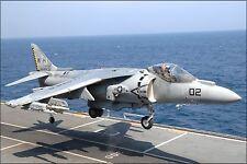 Poster, Many Sizes; U.S. Marine Corps Av-8B Harrier Attack Squadron Vma-542 Tige