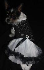 Kleid Hundekleid Hund XS S M L Hundebekleidung Tüll Strass Spitze schwarz weiß