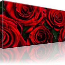 Rote Rosen Natur Bild Bilder Leinwand Keilrahmen Wandbild Kunstdruck