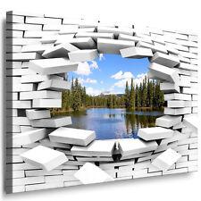 XXL Leinwand bild Optische Täuschung 3D Loch Wandbild Wald See Kunstdruck 62-0-0
