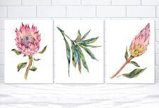 Set of 3 Australian Protea Set Botanical Leaf Set, Native Protea Watercolor