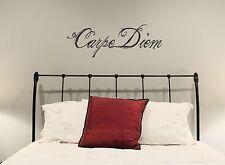 Carpe Diem Wall Decal seize the day removable sticker art quote script decor