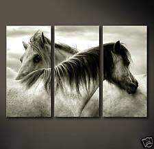 SOUL TO SOUL Leinwand Bilder Bild Pferde Freiheit Reiten Reitsport Pferd Deko XL