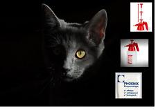 Enzymreiniger Geruchsentferner Katzenurin, Tierurin, Urinentferner  ab 0,5 Liter