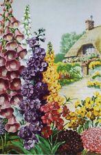 Foxglove, Stock, Wallflowers, Sweet scabious by Else Bostelmann