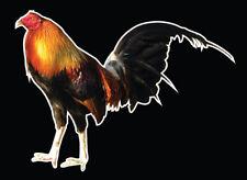 Rooster Bird Farm Decal Car Window Vinyl Sticker truck Wall Trailer Hen Chicken